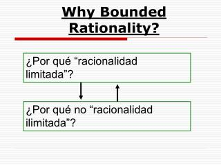 Why Bounded Rationality?