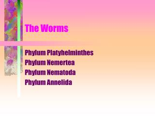 The Worms