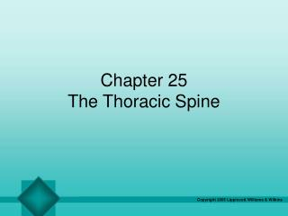 Chapter 25 The Thoracic Spine