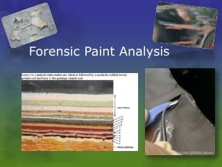 Forensic Paint Analysis