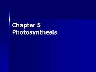Chapter 5 Photosynthesis