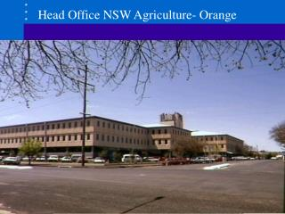 Head Office NSW Agriculture- Orange