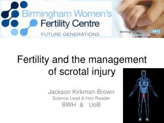 Fertility and the management of scrotal injury