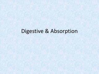 Digestive & Absorption