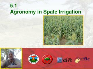 5.1 Agronomy in Spate Irrigation