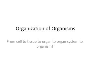 Organization of Organisms