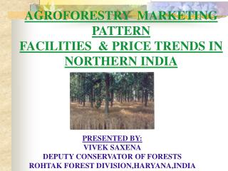 AGROFORESTRY  MARKETING PATTERN FACILITIES  & PRICE TRENDS IN  NORTHERN INDIA