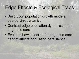 Edge Effects & Ecological Traps