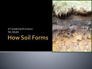 How Soil Forms
