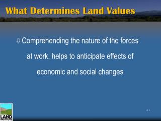 What Determines Land Values