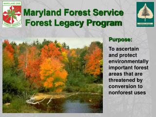Maryland Forest Service  Forest Legacy Program