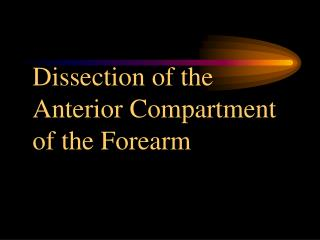 Dissection of the Anterior Compartment of the Forearm