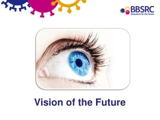 Vision of the Future