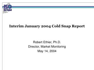 Interim January 2004 Cold Snap Report