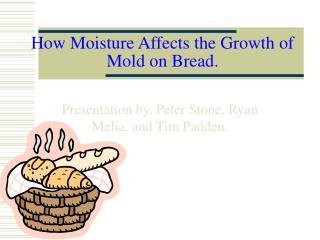 How Moisture Affects the Growth of Mold on Bread .