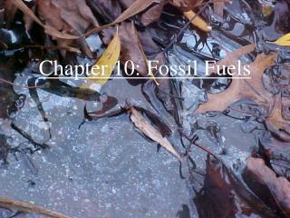 Chapter 10: Fossil Fuels