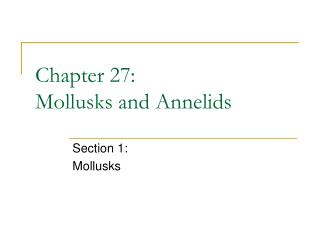 Chapter 27: Mollusks and Annelids