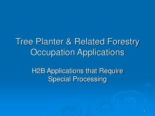 Tree Planter & Related Forestry Occupation Applications