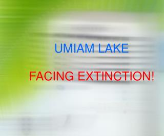 UMIAM LAKE FACING EXTINCTION!