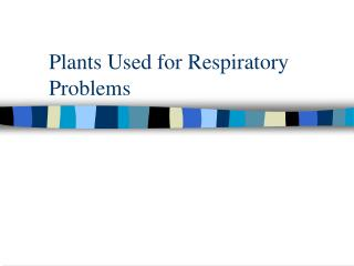 Plants Used for Respiratory Problems