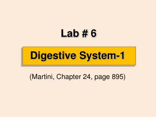 Digestive System-1