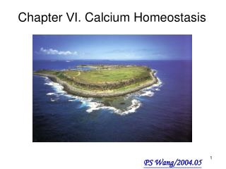 Chapter  ? . Calcium Homeostasis