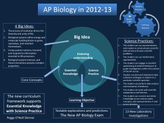 AP Biology in  2012-13