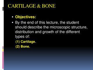 CARTILAGE &  BONE
