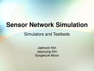 Sensor Network Simulation