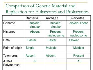 Comparison of Genetic Material and Replication for Eukaryotes and Prokaryotes