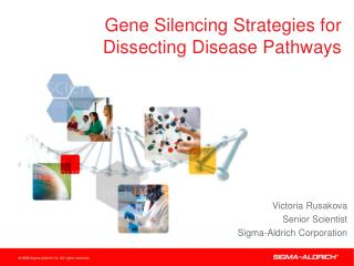 Gene Silencing Strategies for Dissecting Disease Pathways