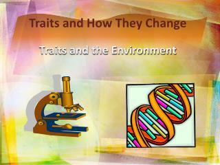 Traits and How They Change Traits and the Environment