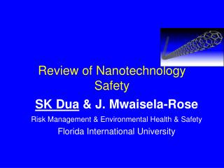 Review of Nanotechnology Safety