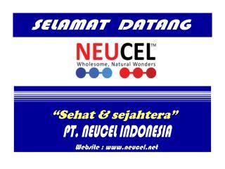 Neucel