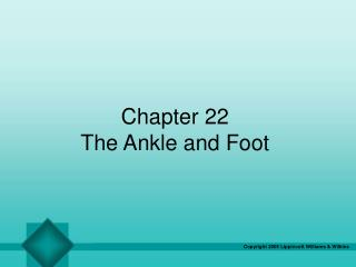 Chapter 22 The Ankle and Foot