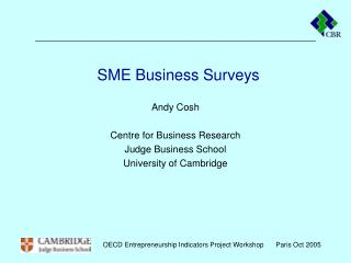 SME Business Surveys