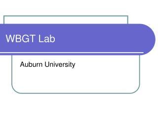 WBGT Lab