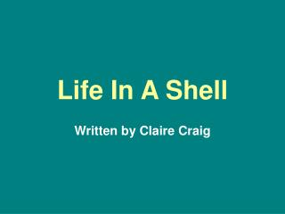 Life In A Shell