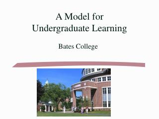 A Model for  Undergraduate Learning