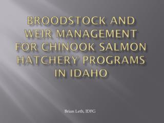 Broodstock and Weir Management for Chinook Salmon hatchery programs in Idaho