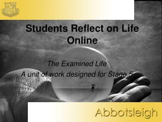 Students Reflect on Life Online