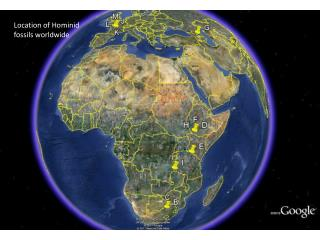 Location of Hominid fossils worldwide