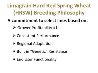 Limagrain Hard Red Spring Wheat (HRSW) Breeding Philosophy