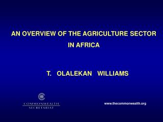 AN OVERVIEW OF THE AGRICULTURE SECTOR  IN AFRICA