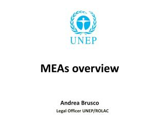 MEAs overview Andrea Brusco