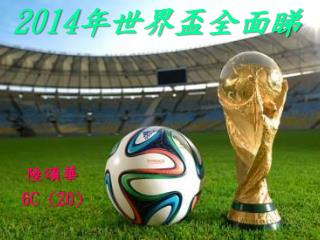 2014 年 世界 盃 全面睇