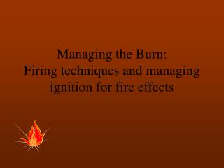 Managing the Burn: Firing techniques and managing ignition for fire effects