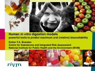 Human in vitro digestion models