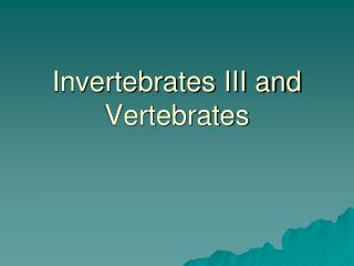 Invertebrates III and Vertebrates