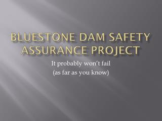 Bluestone Dam Safety Assurance Project